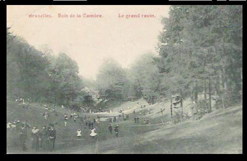 Bois de la Cambre. Grand ravin.